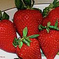 Strawberries by Ericamaxine Price