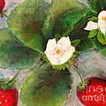 Strawberries by Joi Sampsell