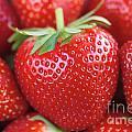 Strawberries by Neil Overy