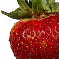 Strawberry Close Up No.0011 by Randall Nyhof