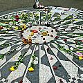 Strawberry Fields by Greg Norrell