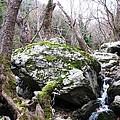 Skotina Springs by Andonis Katanos