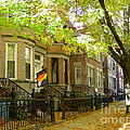 Windsor Terrace by Mark Gilman