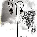 Street Lamps by Diana Haronis