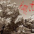 Street Scene Happy Holidays by Skip Willits