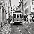 Streetcar Estrela by Kelly Wall