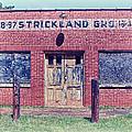 Strickland Grocery by Lynne Jenkins
