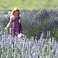 Stroll Through The Lavender by Brooke T Ryan