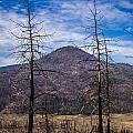 Studies On Sugarloaf Peak 2 by Greg Nyquist