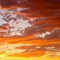 Stunning Sunset by Phyllis Kaltenbach