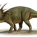 Styracosaurus Albertensis by Sergey Krasovskiy