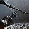 Submarine Telephone Cable And Diver - Hanauma Bay 1973 by Bill Owen