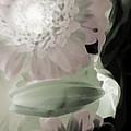 Subterranean Memories 9 - Dreams by Lenore Senior