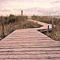 Subtle Bridge by Betsy Knapp