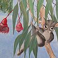 Sugar Glider by Joanne Seath