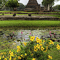 Sukhothai Historical Park by Adrian Evans