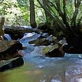Summer Creek by Ernie Echols