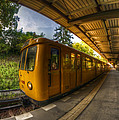 Summer Eveing Train. by Nathan Wright