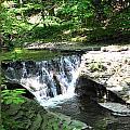 Summer Falls by Virginia Pakkala