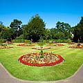 Summer Garden by Tom Gowanlock