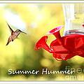 Summer Hummer Poster by Carol Groenen