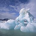 Summer Icebergs, Spitsbergen Island by Tui De Roy