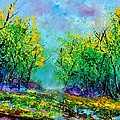 Summer In The Wood 452160 by Pol Ledent