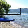 Summer Kayak by Traci Cottingham
