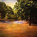 Summer Pond by Jai Johnson