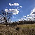 Summer Sky In The Fall by CJ Schmit