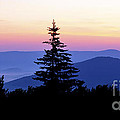 Summer Solstice Sunrise Highland Scenic Highway by Thomas R Fletcher