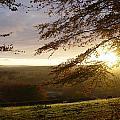 Sun Almost Up by Lloyd Burchell