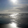 Sun And Silver Sea by Pamela Patch