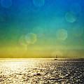 Sun Flare Sail by Vicki Jauron