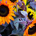 Sun Flower Sunday by John Loyd Rushing