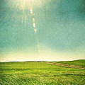 Sun Over Field by Jill Battaglia