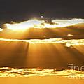 Sun Rays At Sunset Sky by Elena Elisseeva