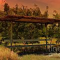 Sun Set Bus Stop by Tiffani Vanhunnik