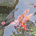 Sun Water Flowers And Fish by Evgeny Pisarev