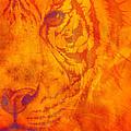 Sunburst Tiger On Fire by Mayhem Mediums
