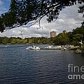 Jamaica Pond Sailing by Gordon Gaul
