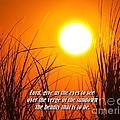 Sundown Beauty by Nick Zelinsky