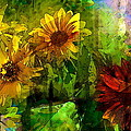 Sunflower 4 by Pamela Cooper