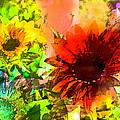 Sunflower 5 by Pamela Cooper