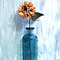 Sunflower In A Beach Bottle by Marsha Heiken