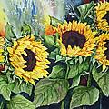 Sunflower Serenade by Ilene Paulsen