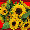 Sunflowers by Edite Azevedo