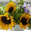 Sunflowers Four by Saundra Lane Galloway