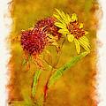 Sunflowers In Fall by Judi Bagwell