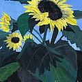 Sunflowers by Teri  Naomi